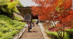 Yamadera Risshakuji ngôi chùa đẹp nhất Nhật Bản