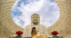 Ngắm tượng phật giữa cánh đồng hoa oải hương ở Sapporo
