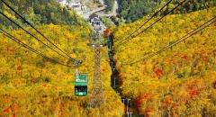 Nơi đầu tiên đón mùa thu ở Nhật Bản