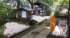 Cùng Tour Nhật Bản tham quan ngôi chùa hàng ngàn tượng mèo