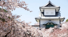 5 thành phố cổ mùa xuân tuyệt đẹp ở Nhật Bản