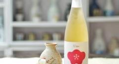 5 loại rượu nhất định phải thử khi đi du lịch Nhật Bản