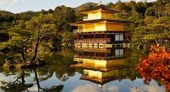 Khám phá chùa Kim Các Tự (Kinkakuji) ở Kyoto