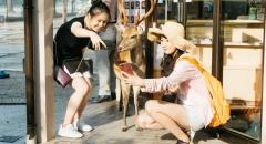 Đến Nara - thành phố của loài 'nai thần' đặc biệt