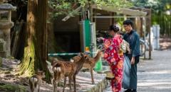 12 điểm du lịch Nhật Bản không thể bên cạnh Tokyo