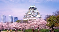 7 điểm check-in không thể bỏ qua ở Nagoya